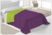 3537/CL-Basic-24-Morado-Pistacho-small-10.jpg
